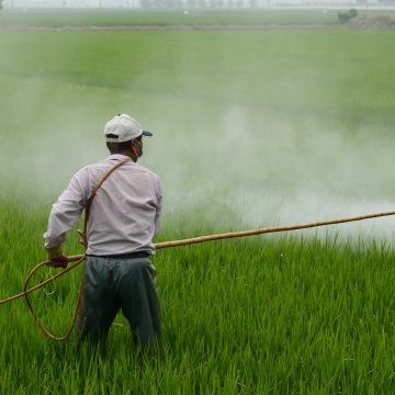 Agricultural chemicals and their quality control